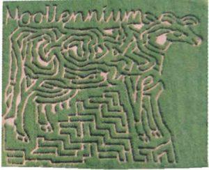 2000 Maze - Moolennium