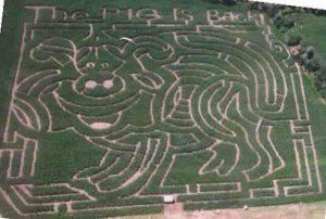 2002 Maze – Princess Corneillia La Field