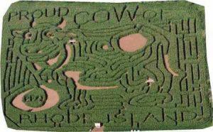 2003 Maze – Proud Cow of Rhode Island