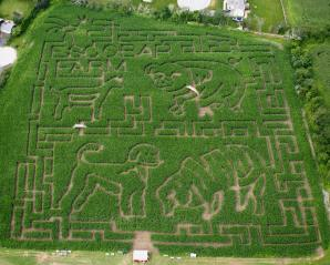 2009 Maze – Farm Animals